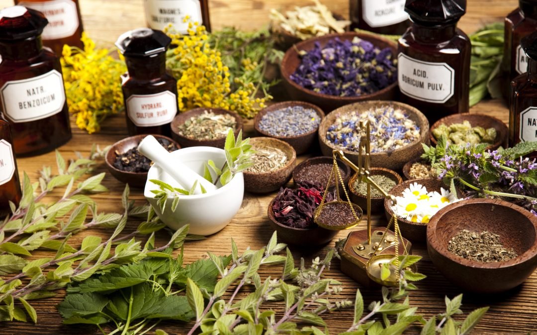 Herbs for Women's Health