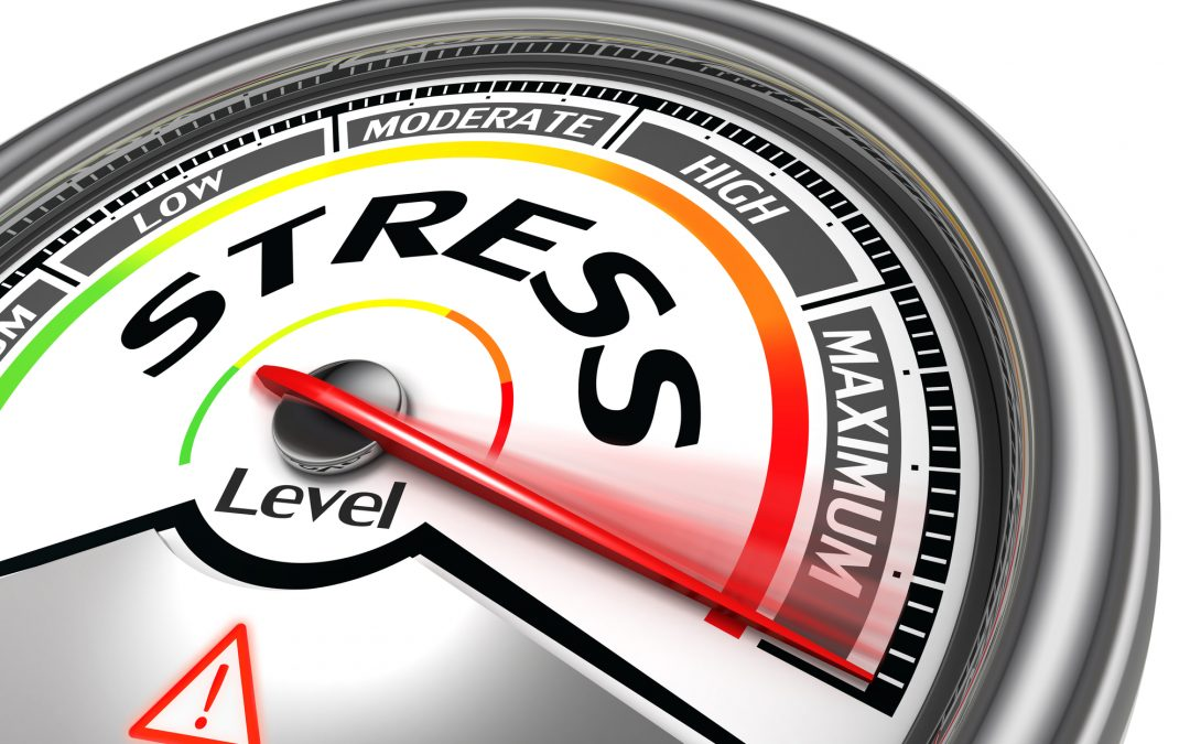 Stress is Shrinking Your Brain