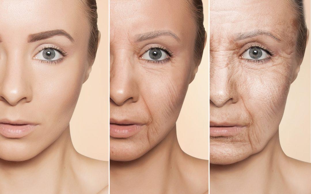 How Menopause Destroys Collagen